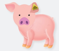 Cartoon pig with ear tag.